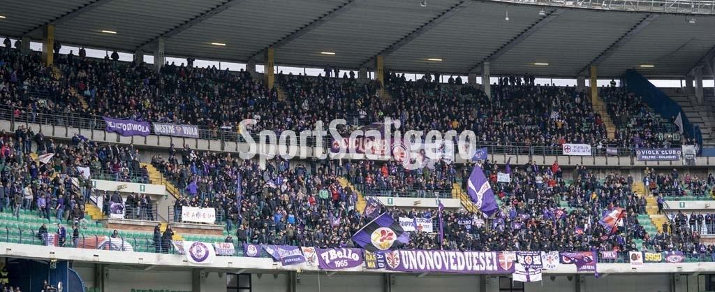 Curva-Fiorentina_2052